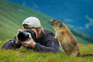 Me_and_the_Marmot_by_AndreasResch-650x433
